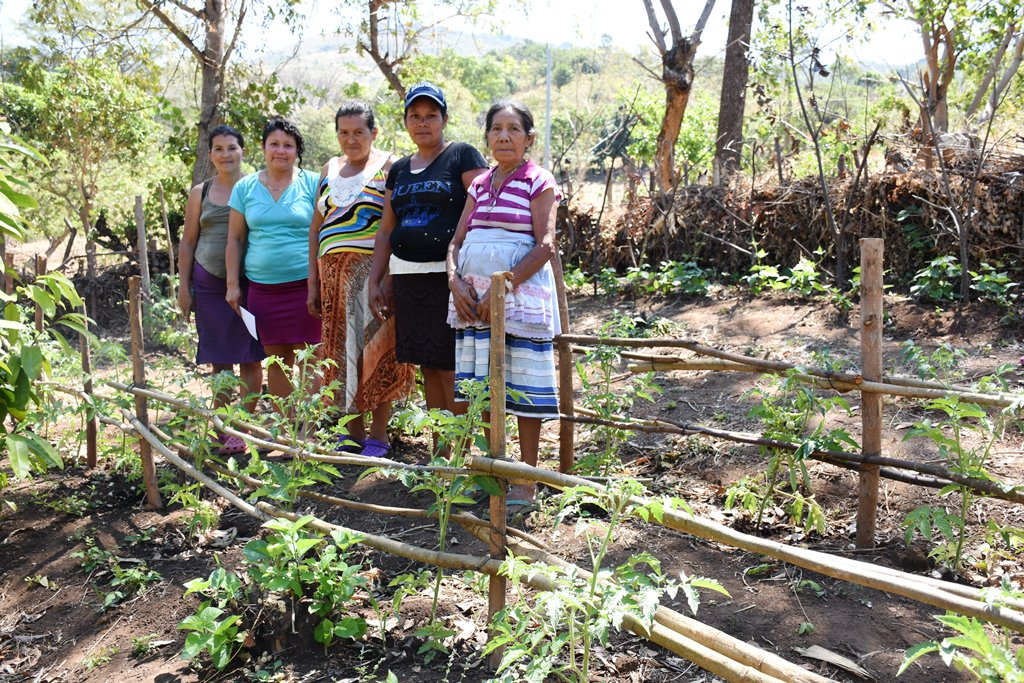 Mujeres lideran parcela agroecológica