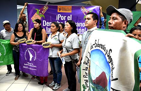 Organizaciones exigen reconocimiento de Semillas Nativas y Criollas