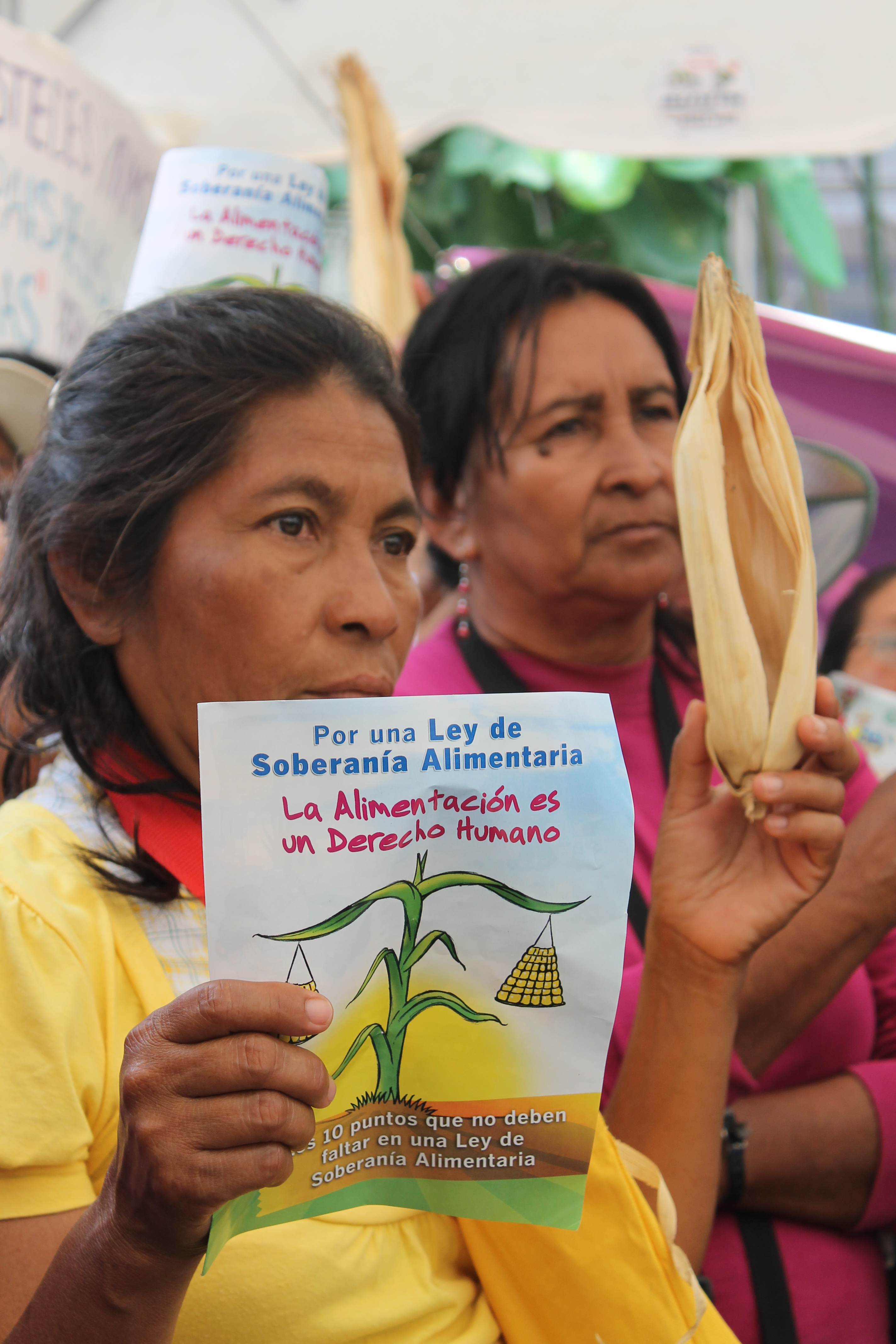 Mesa por la Soberanía Alimentaria exige a la Asamblea Legislativa la ratificación de la reforma al art. 69 Cn. y una Ley de Soberanía Alimentaria